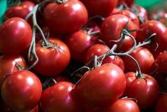 Verse rode tomatenachtergrond, close-up farming Landbouw royalty-vrije stock afbeeldingen