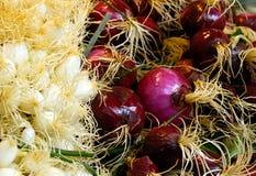 Verse rode uien bij de marktkraam. Stock Foto