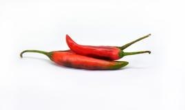 Verse roodgloeiende Spaanse peperpeper Royalty-vrije Stock Afbeelding
