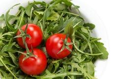 Verse rucolabladeren in een kom met tomaten royalty-vrije stock fotografie