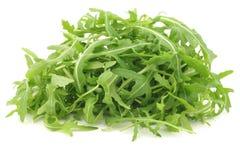 Verse rucolabladeren (sativa Eruca) Stock Foto