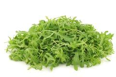 Verse rucolabladeren (sativa Eruca) royalty-vrije stock foto's