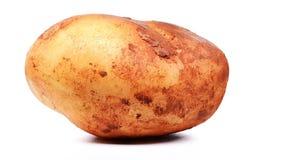 Verse ruwe aardappel met snuifjemodder het ratating op witte achtergrond stock footage