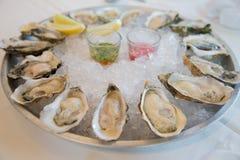 Verse ruwe oesters Royalty-vrije Stock Foto