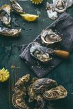 Verse ruwe oesters en citroen op ijsblokjes op houten lijst royalty-vrije stock foto's