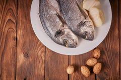 Verse ruwe overzeese vissen stock afbeelding