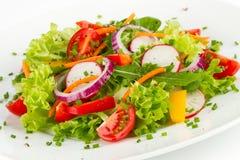 Verse salade Royalty-vrije Stock Foto