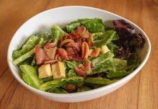 Verse salade Caesar Royalty-vrije Stock Fotografie