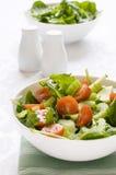 Verse Salade in een kom Royalty-vrije Stock Afbeeldingen