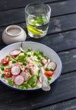 Verse salade met couscous, groenten en gebakken zalm Gezond smakelijk voedsel Stock Afbeeldingen