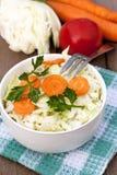 Verse salade met groenten Stock Afbeeldingen