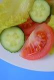 Verse salade met groenten Royalty-vrije Stock Foto's