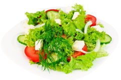 Verse salade met kaas Royalty-vrije Stock Afbeelding