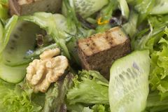 Verse salade met okkernoten en tofu kaas royalty-vrije stock afbeeldingen