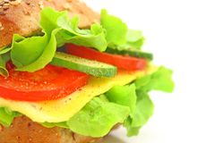 Verse sandwich Royalty-vrije Stock Foto's