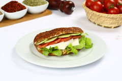 Verse sandwich royalty-vrije stock afbeelding