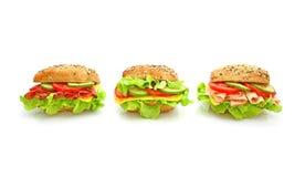 Verse sandwich met groenten Stock Fotografie