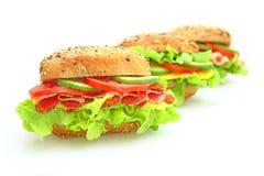 Verse sandwich met groenten Royalty-vrije Stock Afbeeldingen