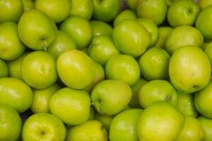 Verse sappige Jujube of groene aapappel royalty-vrije stock foto's
