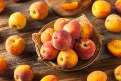 Verse Sappige Organische Gele Perziken Royalty-vrije Stock Afbeelding