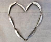 Verse sardine in hartvorm Stock Fotografie