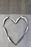 Verse sardine in hartvorm Stock Foto