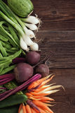 Verse seizoengebonden groenten Stock Afbeeldingen