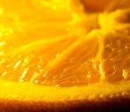 Verse sinaasappel Royalty-vrije Stock Afbeelding
