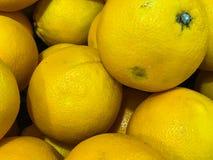 Verse sinaasappelen bij fruitafdeling in supermarkt Royalty-vrije Stock Afbeeldingen