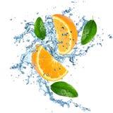 Verse sinaasappelen met waterplons royalty-vrije stock afbeeldingen
