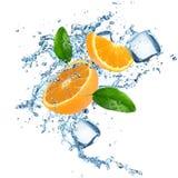 Verse sinaasappelen met waterplons royalty-vrije stock foto's
