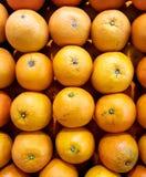 Verse sinaasappelenachtergrond Royalty-vrije Stock Afbeelding