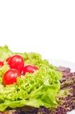 Verse sla en tomaat op plaat Royalty-vrije Stock Afbeeldingen