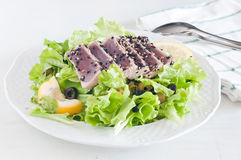 Verse slasalade met pan-geschroeide rode tonijn Royalty-vrije Stock Foto's
