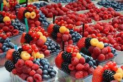 Verse smakelijke de zomer kleurrijke bessen Stock Foto's