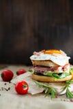Verse smakelijke hamburger Stock Afbeelding