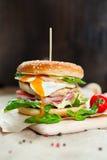 Verse smakelijke hamburger Stock Foto