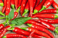 Verse Spaanse peperpeper op een houten raad Groeiende Spaanse peper Gezond kruid Royalty-vrije Stock Fotografie