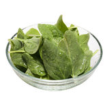 Verse spinazie in een kom (het Knippen inbegrepen weg) Stock Foto