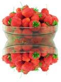 Verse strawberrys Royalty-vrije Stock Afbeelding