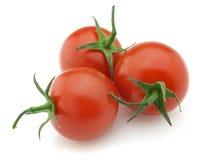 Verse tomaat Royalty-vrije Stock Afbeelding