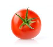 Verse Tomaat Stock Foto