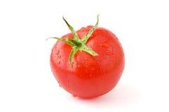 Verse tomaat royalty-vrije stock foto