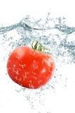 Verse tomaat die in water vallen Royalty-vrije Stock Foto's