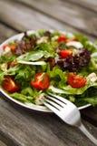 Verse tomaat en komkommersalade op een plaat Royalty-vrije Stock Foto's