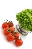 Verse tomaat en sla stock afbeeldingen
