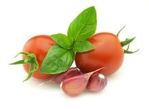 Verse tomaat met kruid royalty-vrije stock afbeelding