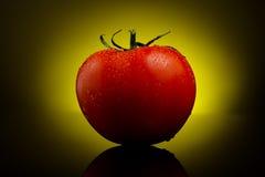 Verse tomaat op geel Royalty-vrije Stock Foto's