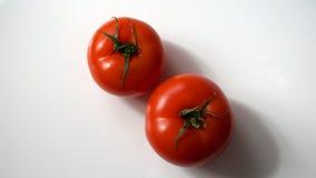 Verse tomaat op wit Stock Foto