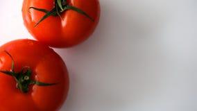 Verse tomaat op wit Stock Afbeeldingen